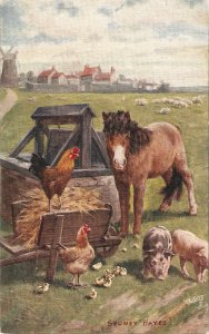 Sydney Hayes. Chums Tuck Oilette Our Farm Ser.PC # 9360