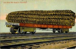 Exaggerated Corn on Rail Car Railroad Car NYC & HR New York City 1912 Div Back