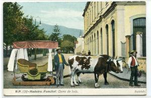 Ox Sled Cart Carro de Bois Funchal Madeira Portugal 1910c postcard