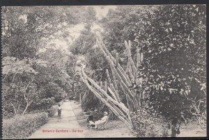 South Africa Postcard - Botanic Gardens, Durban    RS1197