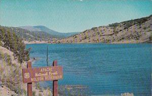 Arizona Apache National Forest Nelson Reservoir