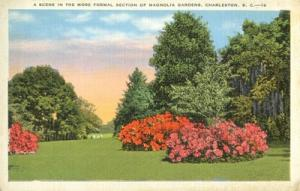A Scene in the More Formal Section of Magnolia Gardens, C...