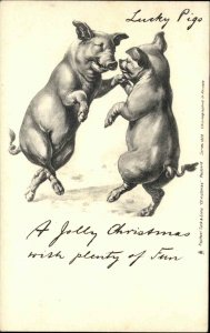 Fantasy - Christmas Dancing Pigs Early TUCK #1828 c1905 Postcard