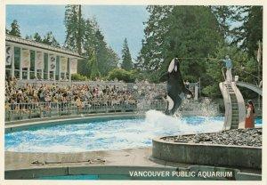 VANCOUVER , B.C. ,1950-60s ; Public Aquarium Killer Whale Show