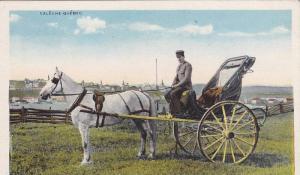 Horse Wagon, Caleche, Quebec, Canada, 1910-1920s