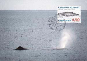 Stamp & Postcard , Whale , GRONLAND , PU-1996
