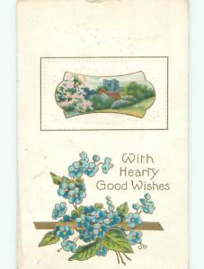 Divided-Back BEAUTIFUL FORGET-ME-NOT FLOWERS - HEARTY GOOD WISHES o9330