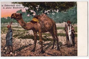 Laboureur dans la plaine Desdrelon