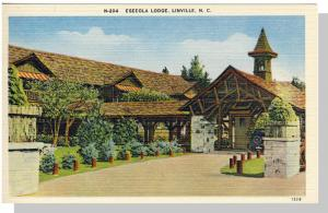 Linville,North Carolina/NC Postcard,Eseeola Lodge,Near Mint!