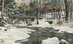 BRONX PARK , New York, 1900-10s; Depth of Winter ; TUCK 2634