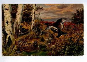 223306 RUSSIA Bird hunting capercaillie ADVERTISING Einem old