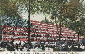 TOLEDO , Ohio , 00-10s ; GAR Human Flag