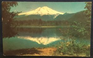 Postcard Used Mt Baker WA LB