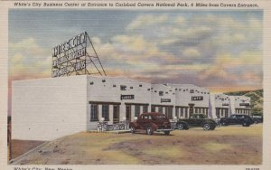 New Mexico White's City Business Center Carlsbad Caverns Entrance Curteich sk273