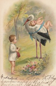 Stork carrying a baby , 1907