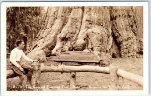 RPPC  SEQUOIA NATIONAL PARK, CA   Base of GENERAL SHERMAN TREE   Postcard