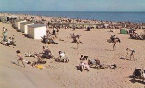 Parents Asleep Children Riot on Caister on Sea Beach Norfolk 1970s Postcard