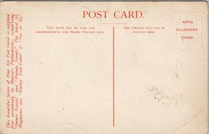 Native Houses Dutch Indies Shurey's Postcard E45