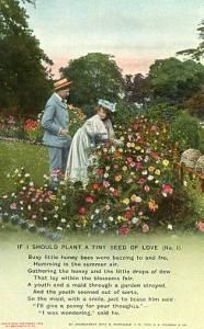 If I should plant a tiny seed of love...