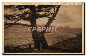 Postcard Old Du Cap d'Antibes to Cap Martin