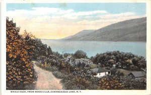 Whale Back Canandaigua Lake, New York Postcard