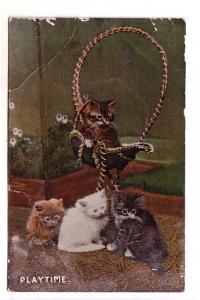 Four Kittens, One Swinging, 'Playtime',  Wildt & Kray, Printed in Saxony