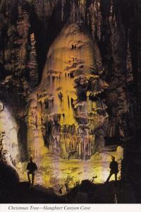 New Mexico Carlsbad Christmas Tree Slaughter Canyon Cave Carlsbad Caverns Nat...