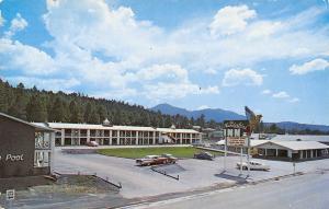 Williams Arizona~Thunderbird Inn~Bird Sign~East End~Route 66~1950s Cars~Postcard