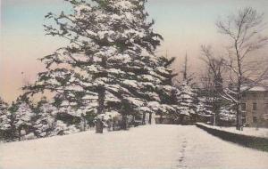 New Jersey Denville Winter At St Francis Health Resort Albertype