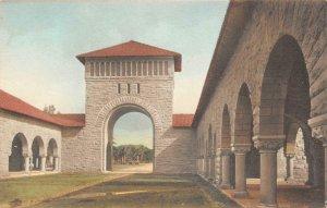 Quadrangle, Stanford University, Palo Alto, CA c1920s Albertype Vintage Postcard