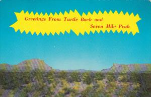Greetings From Turtle Back And Seven Mile Peak Blanca Texas