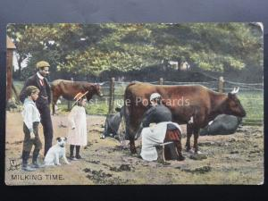 Farm Life MILKING TIME shows Maid Milking a Cow c1908 by Raphael Tuck No.8060
