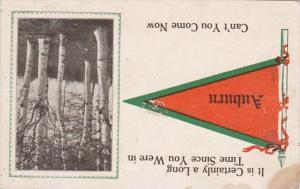 Pennant Series Auburn Iowa 1914