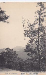 View of ITSUKUSHIMA, Hiroshima, Japan, 00-10s