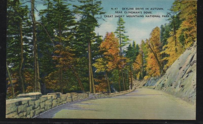 Great Smoky Mountains Nat Park Skyline Drive Fall colour PC  unused