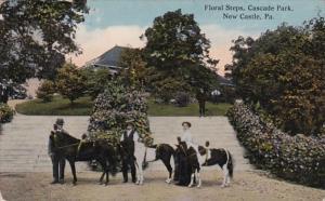 Pennsylvania New Castle Floral Steps Cascade Park 1916