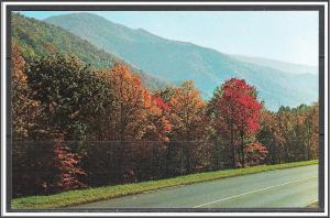 United States Fall Colors Southern Appalachian Mountains