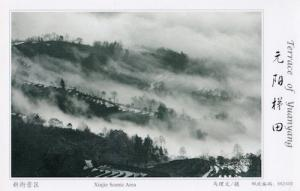 Xinjie Scenic Area Aerial Terrace Of Yuanyang China Postcard
