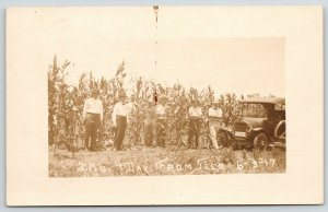 Corn Field~High as Elephants Eye: 2 Months from Seed~Car License Plate~1917 RPPC