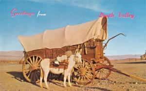 GREETINGS FROM DEATH VALLEY CALIFORNIA-WHITE DONKEY-COVERED WAGON POSTCARD 1960s