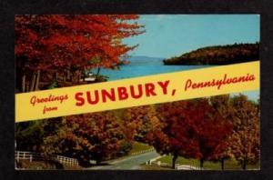 PA Greetings from SUNBURY PENNSYLVANIA PENN Postcard PC