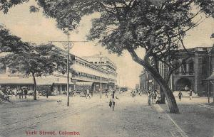 York Street, Colombo, Ceylon, early postcard, unused