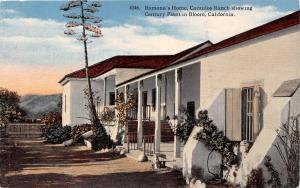 CUMULOS RANCH CALIFORNIA RAMONA'S HOME CHOWING CENTURY PLANT POSTCARD c1910s
