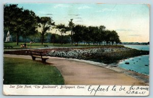 Postcard CT Bridgeport Sea Side Park The Boulevard 1907 View N13