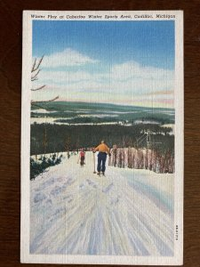 Winter Play at Caberfea Winter Sports Area, Cadillac, Michigan Skiing C18