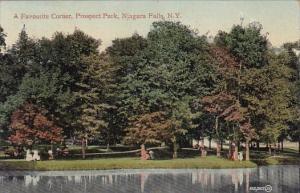 New York Nagara Falls A Favourite Corner Prospect Park