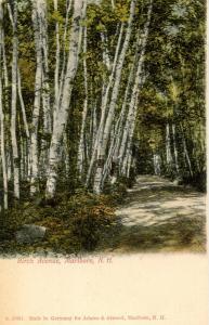 NH - Marlboro. Birch Avenue