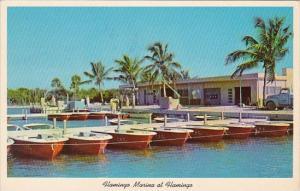 Florida Everglades National Park Flamingo Marina At Flamingo 1965