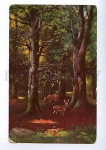 127818 HUNT Forest DEER Vintage Color PC