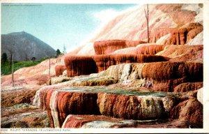 Yellowstone National Park Pulpit Terraces Detroit Publishing